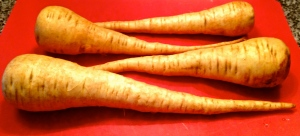 Yep, those are parsnips!