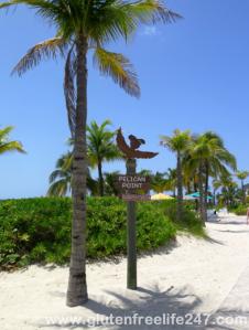 Castaway Cay Magical Monday