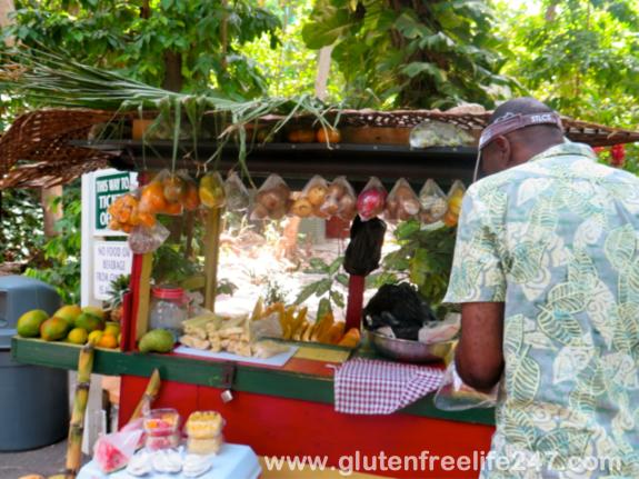 Port Adventures on The Disney Cruise- Mango, Jamaica