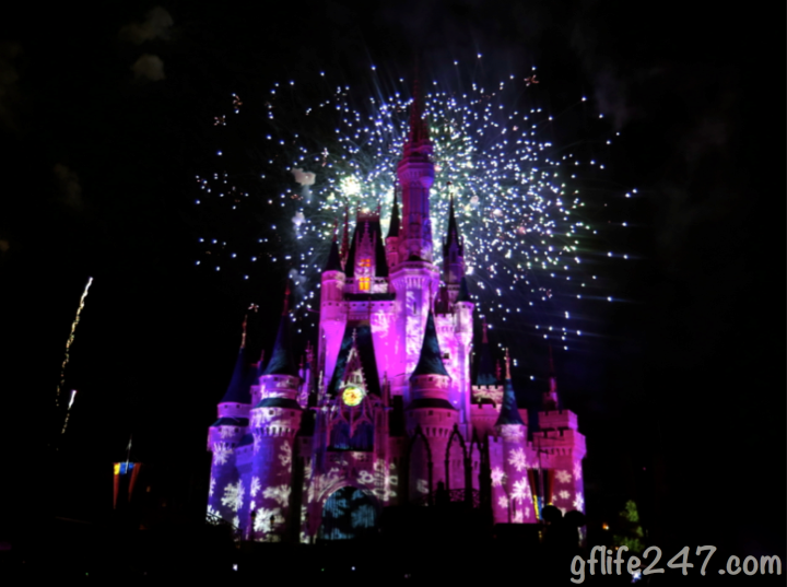 Christmas in Disney World 2014