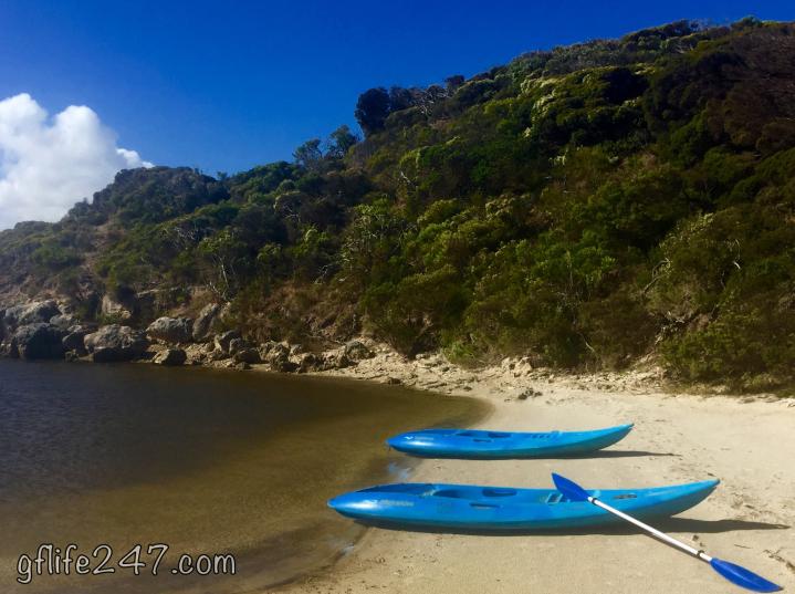 kayak kangaroo island