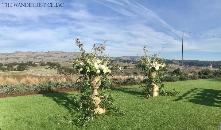 Vineyard Wedding Near San Luis Obispo